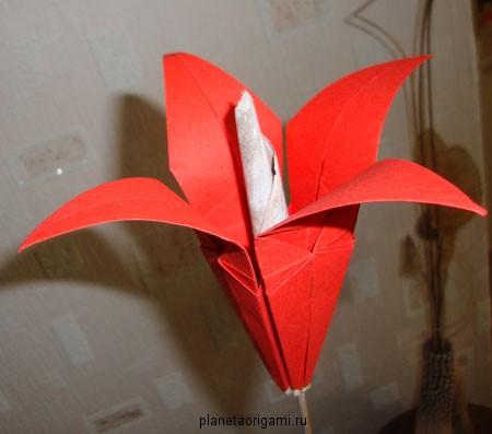 оригами из бумаги лилия видео